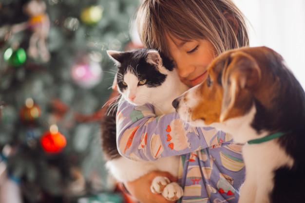 Prenez soin de vos animaux de compagnie et proposez leur une assurance santé chat chien ou NAC, contactez : 3hconseils@orange.fr & 03.26.24.37.40